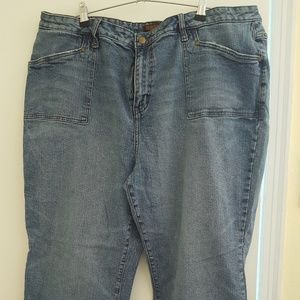 Zana*Di for Fashion Bug blue jeans Premium sz 24S